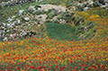 Kreta-Fotoreise, Bild 23