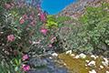 Kreta-Fotoreise, Bild 9