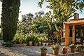 Ferienwohnungen Ostkreta Villa Enagron, Bild 17