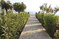 Kreta Südküste Hotel Stavris Frangokastello, Bild 2