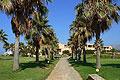 Hotel Club Calimera Sirens Beach, Bild 7