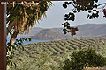 Palekastro Cottages Ostkreta, Bild 0