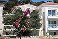 Kreta Südküste Paleochora Residence, Bild 12