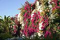 Hotel Creta Royal, Bild 11