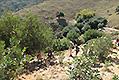 Wandern auf Kreta. Unser Wanderprogramm 2019, Bild 0