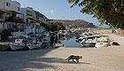 Region: Kreta Nordwesten - Ort: Kolimbari